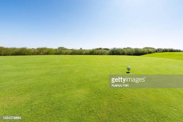 golf ball on green playing field in a sunny day - aiming stock pictures, royalty-free photos & images
