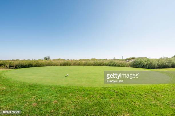 Golf Ball On Green Playing Field In A Sunny Day