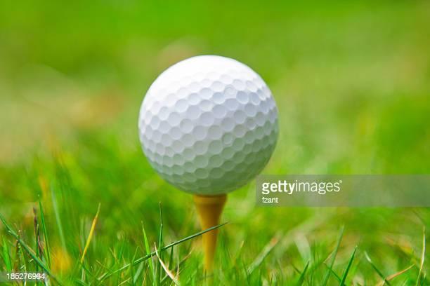 golf ball on tee. green grass.
