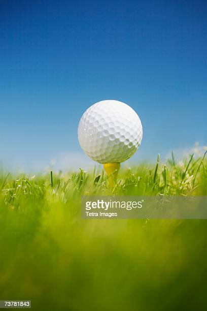 golf ball on tee in grass outdoors - tee sports equipment stock pictures, royalty-free photos & images