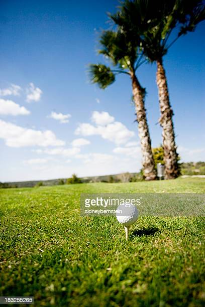 Golf Ball on Tee with Palm Trees