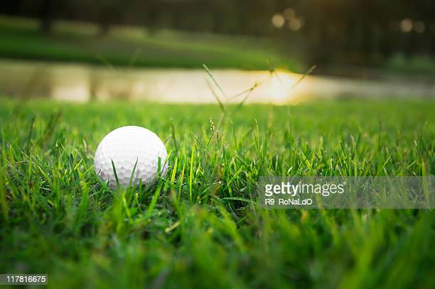 Golf ball on the rough