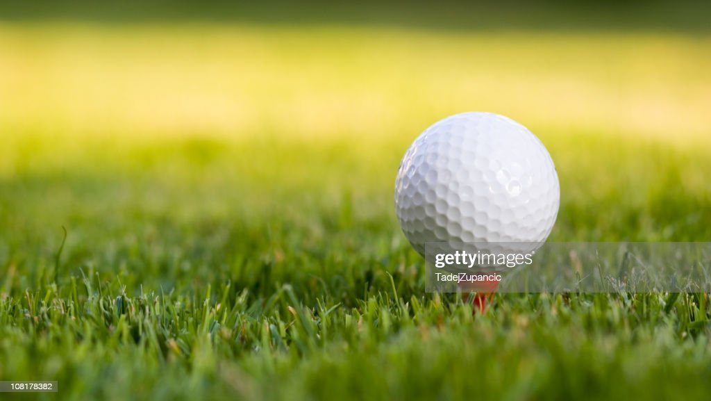 Golf ball on the tee : Stock Photo