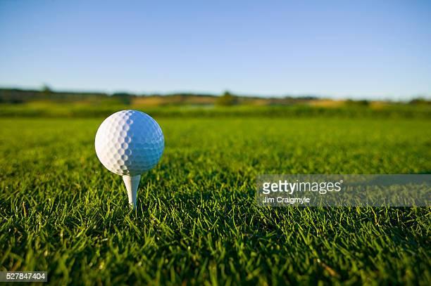 golf ball resting on tee - golftee stock-fotos und bilder