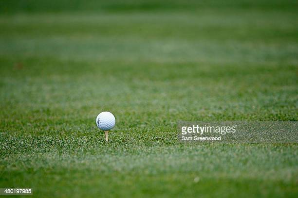 A golf ball sits on a tee on the first hole during the final round of the Arnold Palmer Invitational presented by MasterCard at the Bay Hill Club and...
