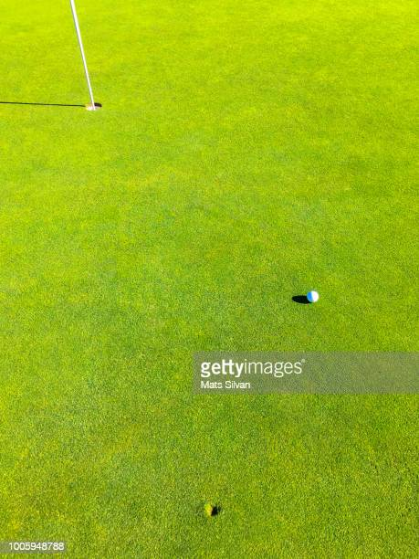 Golf Ball with Backspin and Divot on Golf Green