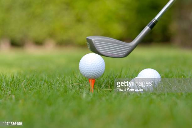 golf balls on a tee with a driver in the green lawn. - golfclub stockfoto's en -beelden
