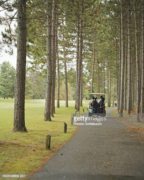 golf cart on course - schlebusch stock pictures, royalty-free photos & images
