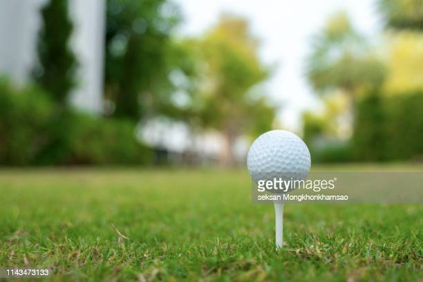 golf club and ball in grass - golf ball stock pictures, royalty-free photos & images