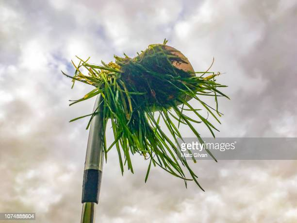 Golf Club Iron with Grass Against Sky