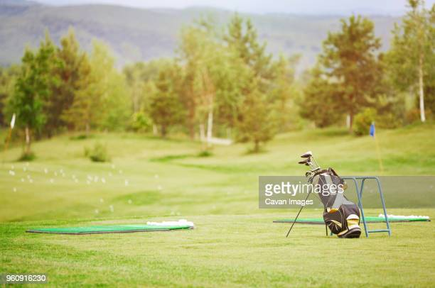 Golf clubs in bag on field