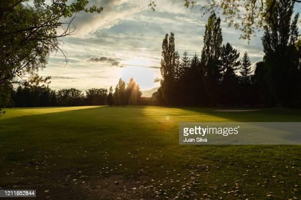 golf course at sunset, puigcerdà, girona, spain - 松林 ストックフォトと画像