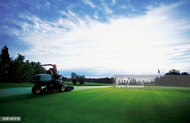 golf course groundskeeper mowing grass - ground staff stock pictures, royalty-free photos & images