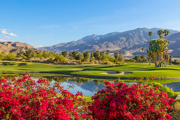 Golf Course In Palm Springs, California (P) Wall Art