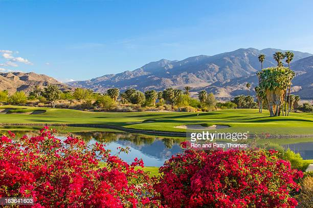 golfplatz in palm springs, kalifornien, tel. - california stock-fotos und bilder