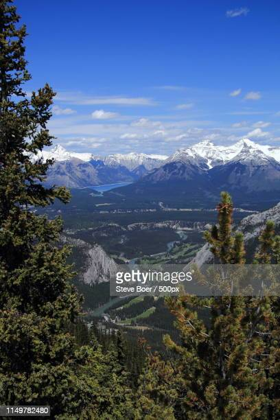 golf course in the mountains - banff springs golf course stock photos and pictures
