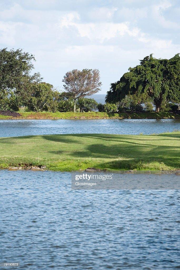 Golf course near a lake : Stock Photo