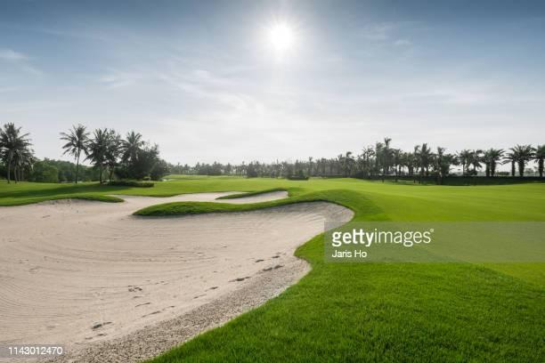 golf course - バンカー ストックフォトと画像