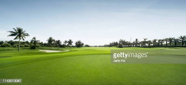 golf course - golf stock pictures, royalty-free photos & images