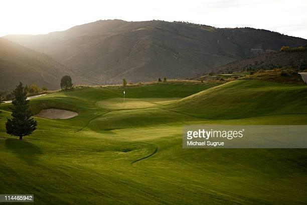 a golf course. - golfplatz stock-fotos und bilder