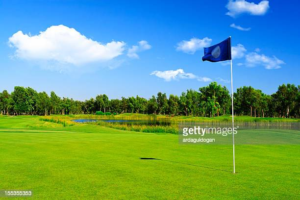 golf course - green golf course stock photos and pictures