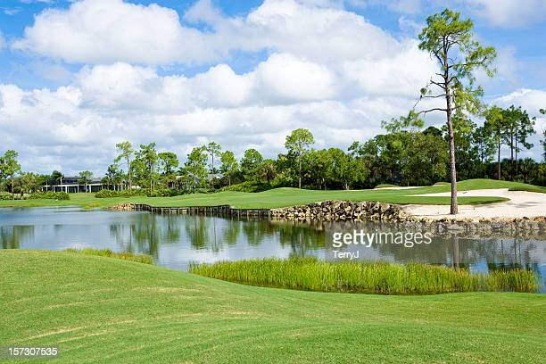 golf course - florida landscaping stock pictures, royalty-free photos & images
