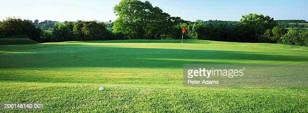 golf course - golfplatz green stock-fotos und bilder