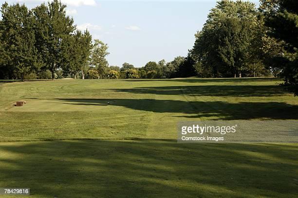 golf course - tee fotografías e imágenes de stock