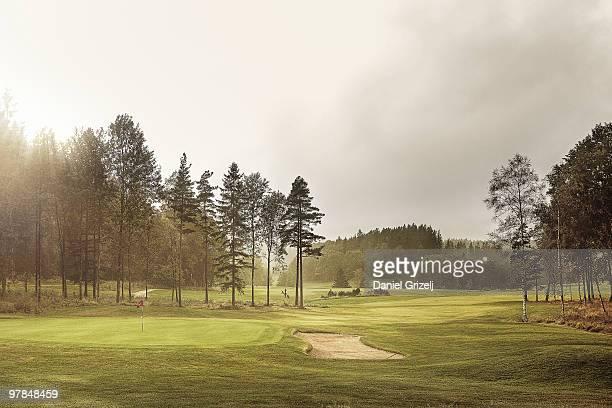 golf course - golfbana bildbanksfoton och bilder