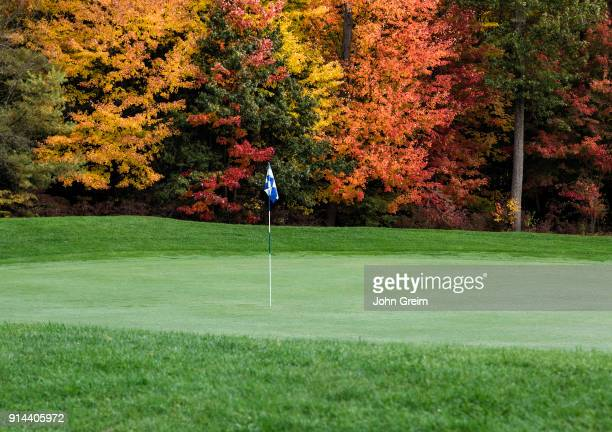 Golf course putting green with autumn foliage.
