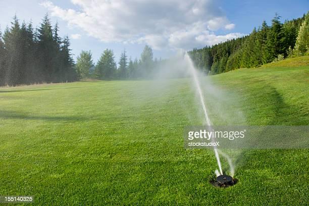 Golf Course Sprinkler