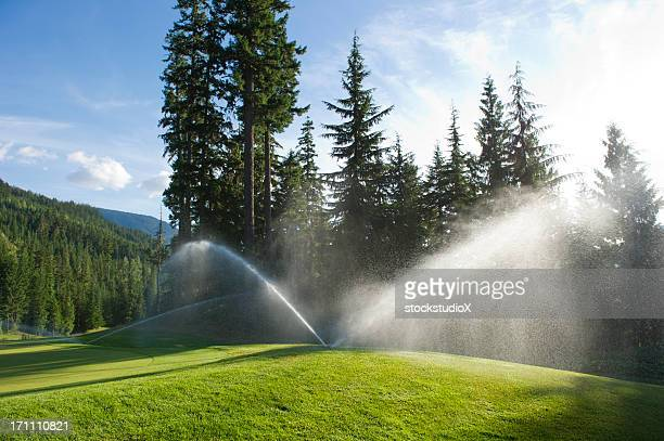 golf course sprinkler - sprinkler system stock pictures, royalty-free photos & images