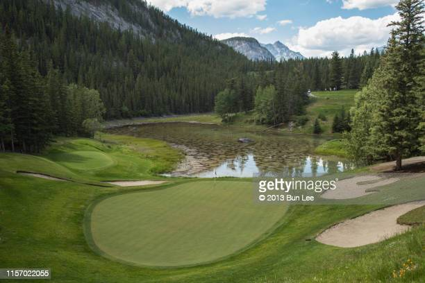 golf course with teeing ground - banff springs golf course stock photos and pictures