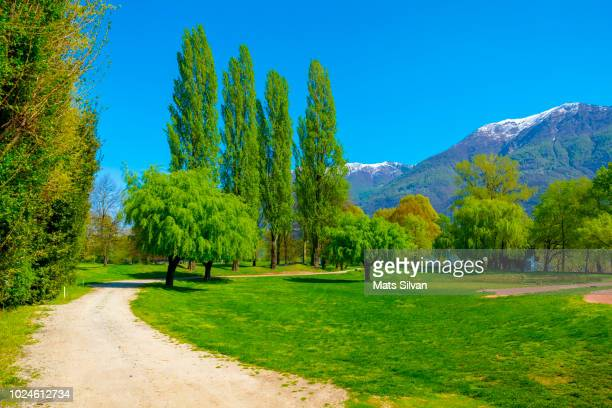 golf course with walkway and mountain - ascona stock pictures, royalty-free photos & images