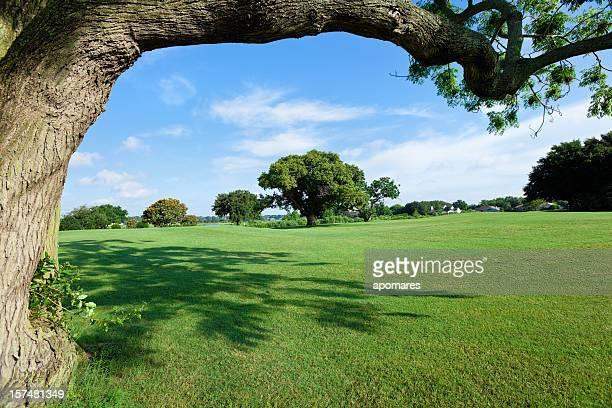 Golf-Felder