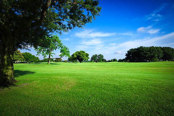 Golf Fields Wall Art