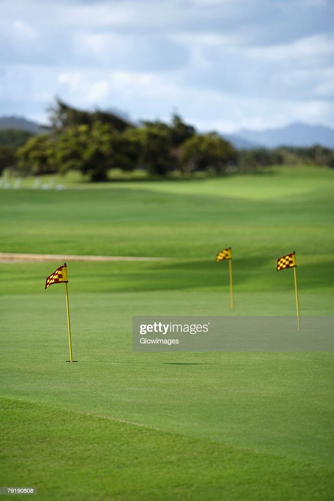 Golf flag in a golf course : Stock Photo
