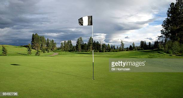 golf flagstick - golf flag stock photos and pictures