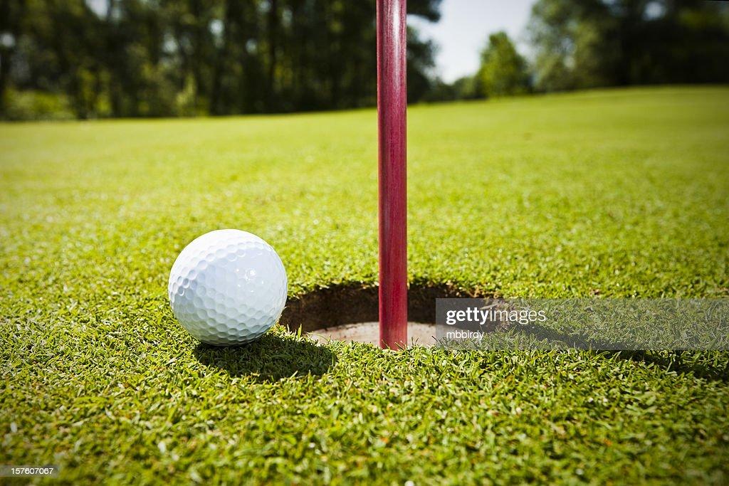 Golf grass court with ball : Stock Photo