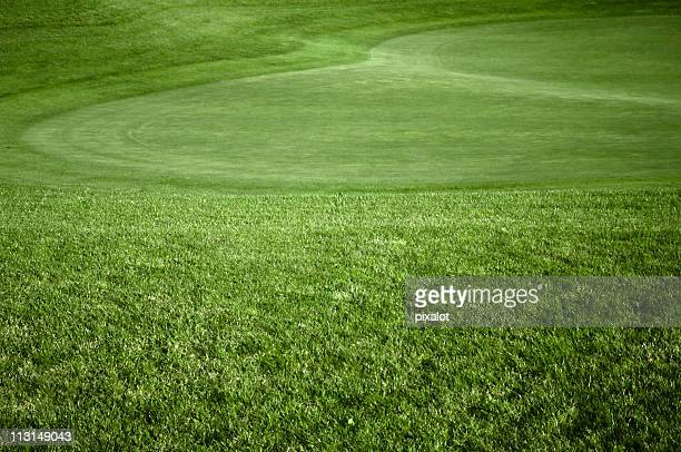 golf green - golf background stock photos and pictures