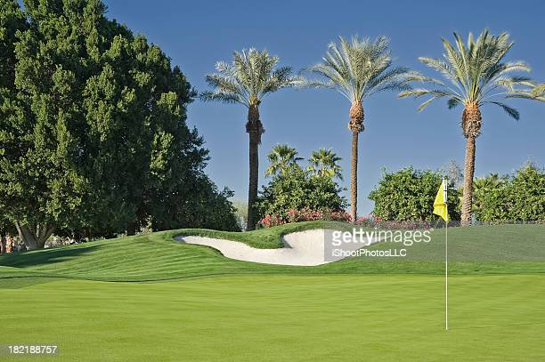 golf green - golf flag stock pictures, royalty-free photos & images