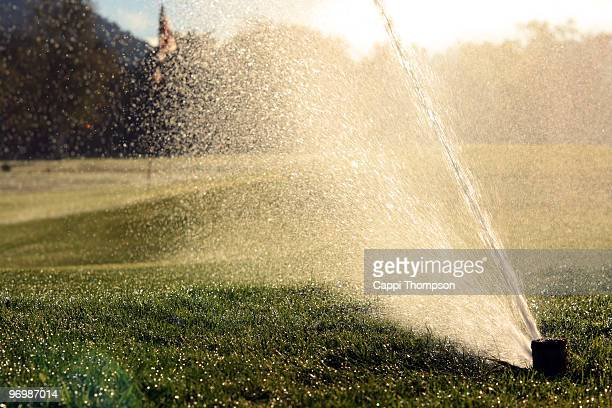 golf irrigation - sprinkler system stock pictures, royalty-free photos & images
