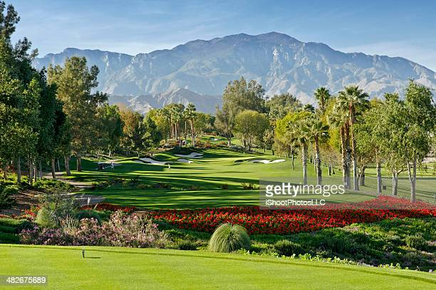 golf resort - indian wells california stock pictures, royalty-free photos & images