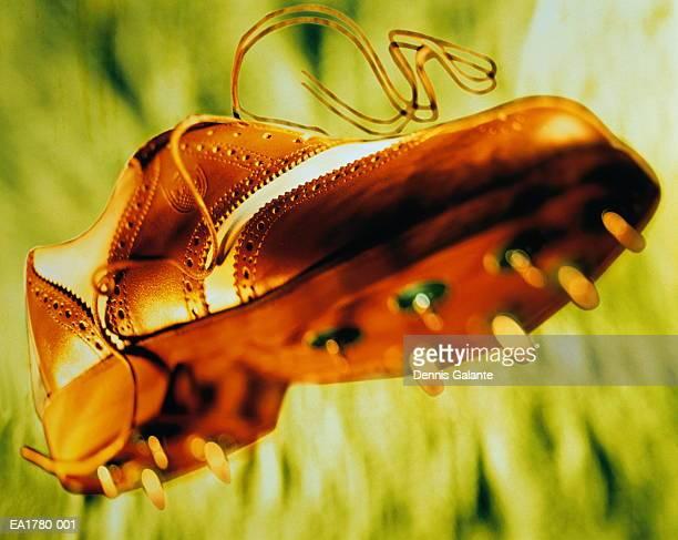 Golf shoe, close-up (Digital Enhancement)