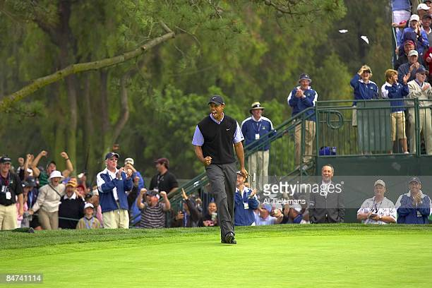 US Open Tiger Woods victorious after making eagle chip on No 13 during Saturday play at Torrey Pines GC La Jolla CA 6/15/2008 CREDIT Al Tielemans