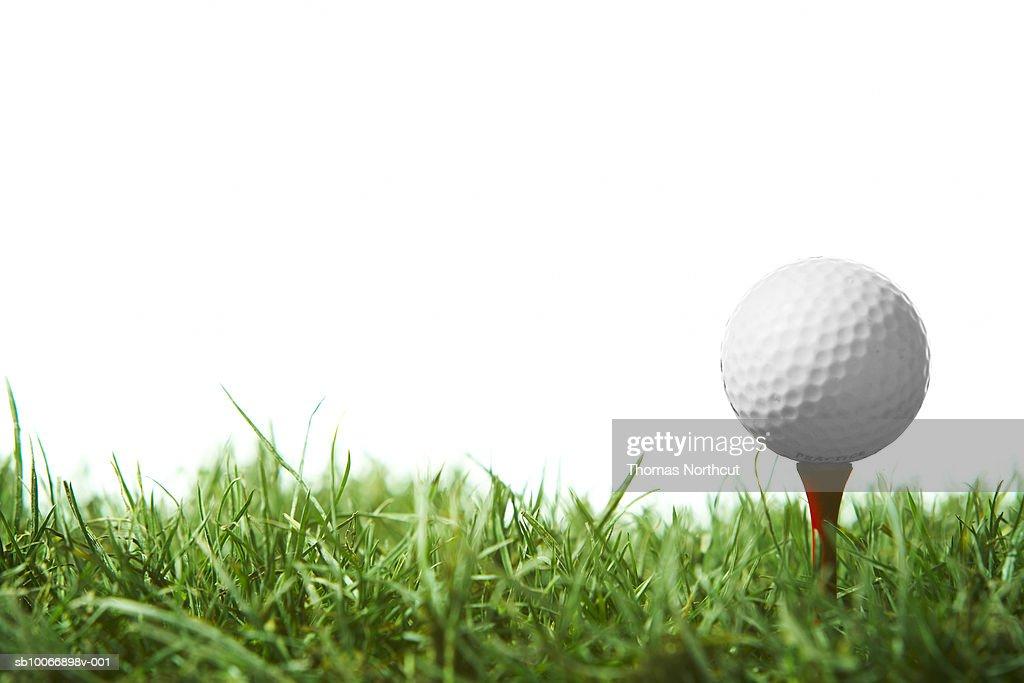 Golfball on tee : Stock Photo