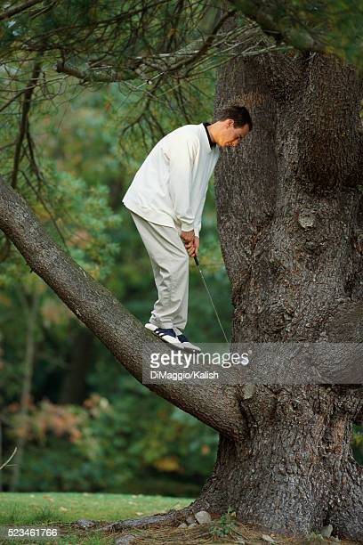 golfer hitting ball from tree - golf humour photos et images de collection