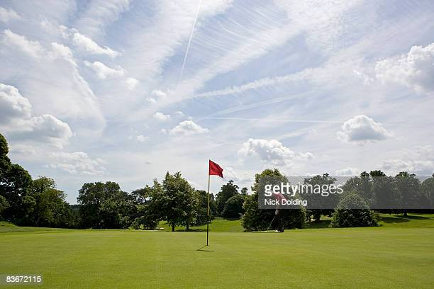golfer - green golf course stock pictures, royalty-free photos & images