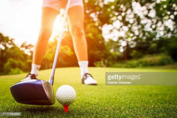 golfer putting the ball into the hole. - golf stock pictures, royalty-free photos & images
