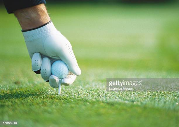 golfer's gloved hand teeing up, close-up - golfe imagens e fotografias de stock